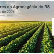 Indicadores do Agronegócio do RS - 1º trimestre de 2021